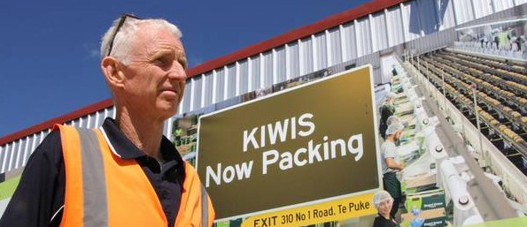 BAY PACKHOUSE INDUSTRY LEADERS FOR SUNGOLD ORGANIC KIWIFRUIT