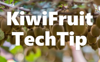 KiwiFruit TechTip Week 12