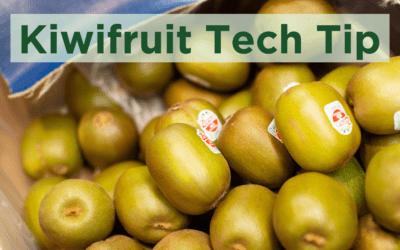 Kiwifruit Tech Tip Week 14